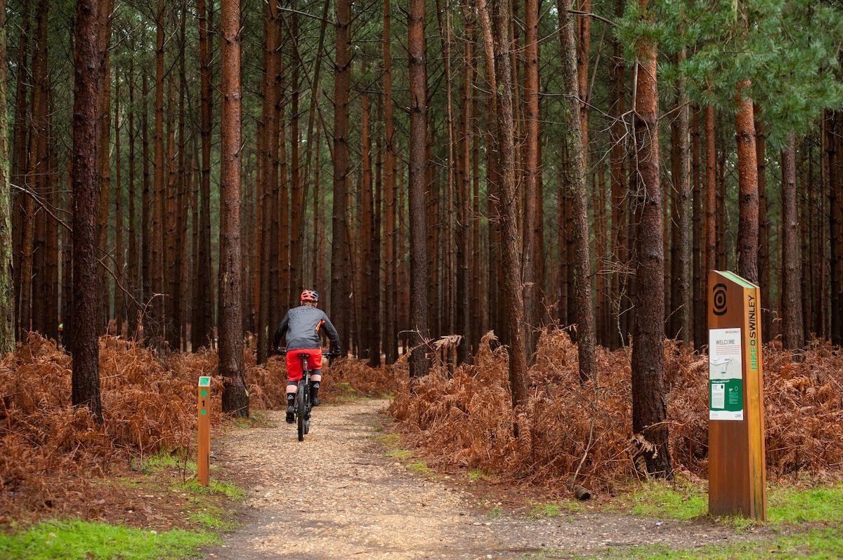 5 November MTB Road Trip – Swinley Forest